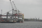 9184237 - CELIA (General Cargo)