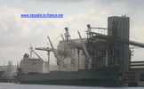 9086526 - DOBROTA (Bulk Carrier)
