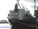 9186479 - RABEE (General Cargo)