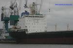 9551923 - SEVERNAYA ZEMLYA (Bulk Carrier)