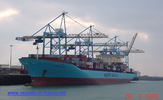 9245744 - CHARLOTTE MAERSK (CONTAINER CARRIER)