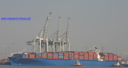 9306196 - PALENA (CONTAINER CARRIER)