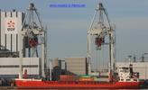 8509818 - MARINA (General Cargo)