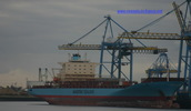 9190779 - LICA MAERSK (CONTAINER CARRIER)