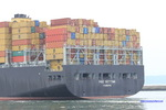 9399038 - MSC BETTINA (CONTAINER CARRIER)