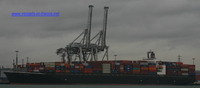 9162485 - NYK ANTARES (CONTAINER CARRIER)