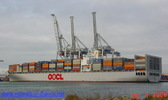 9208021 - OOCL MALAYSIA (CONTAINER CARRIER)