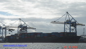 9139488 - PUSAN SENATOR (CONTAINER CARRIER)