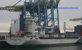 8413887 - SAFMARINE ASIA (CONTAINER CARRIER)