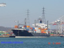 9104512 - SUNMAN (Container Carrier)