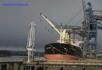 9071595 - DELTA RANGER (Bulk Carrier)