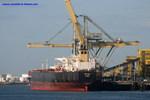 9006875 - BIC IRINI (Bulk Carrier)