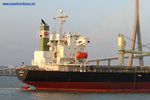 9370422 - STAR LILY (Bulk Carrier)