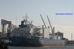 8130681 - CHL PROGRESSOR (Refined Sugar Carrier (RSC))