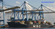 8608200 - MSC LEVINA (CONTAINER CARRIER)