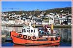 pilot-tug-boat-rollon-20110119-frfec-fecamp-01T-vign.jpg